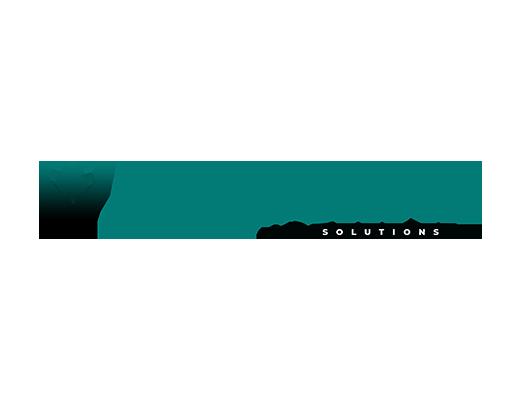 bulksani solutions logo - Atanu Das - Remote IT Consultant